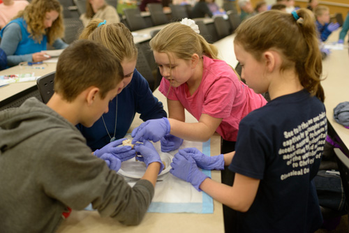 Area homeschool students participated in brain tricks and hands-on activities as part of Brain Awareness Week activities at the Evelyn F. and William L. McKnight Brain Institute of the University of Florida.