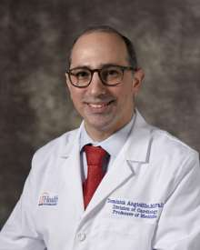 Dominick Angiolillo, M.D., Ph.D.